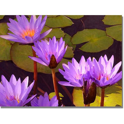 """Trademark Fine Art """"Water Lilies"""" Canvas Wall Art by Amy Vangsgard"""