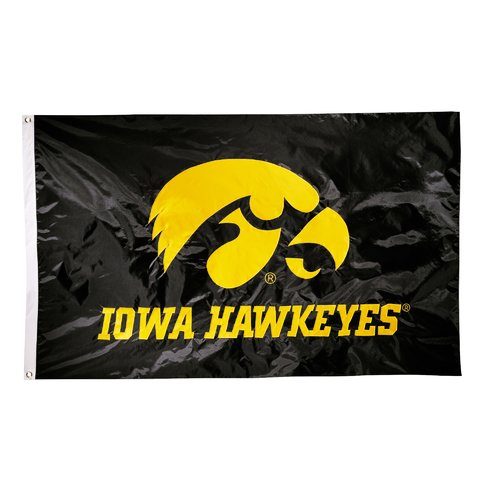 Team Pro-Mark NCAA Applique Nylon 3 x 5 ft. Flag