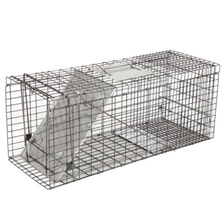 Rodents Race (ZENY 32'' Humane Live Animal Trap Cage, 1-Door Rodent Steel Catch and Release for Raccoons, Cats, Groundhogs, Opossums, Stray Cat, Squirrel, Mole, Gopher,)