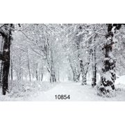 GreenDecor Polyester Fabric 7x5ft Winter Background for Photography White Frozen Snow Backdrops Forest Tree Photo Backdrop