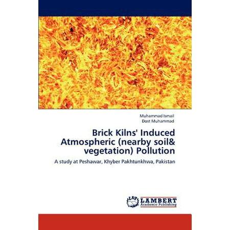 Brick Kilns' Induced Atmospheric (Nearby Soil & Vegetation)