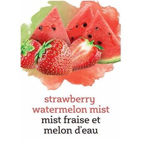 Mist Wine Labels (Strawberry Watermelon - Mist Label