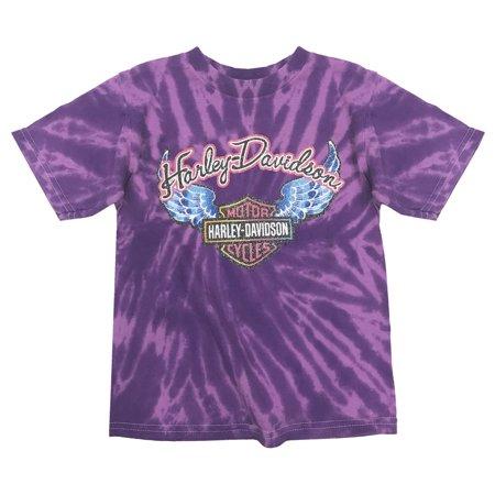 Swirly Girls (Little Girls' Glitter Wings Swirl Tie-Dye Tee, Purple)