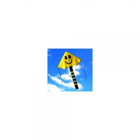 Large Easy Flyer Big Smiley face kite 4 x 7 ft by Weifang New Sky (Best Big Kites)