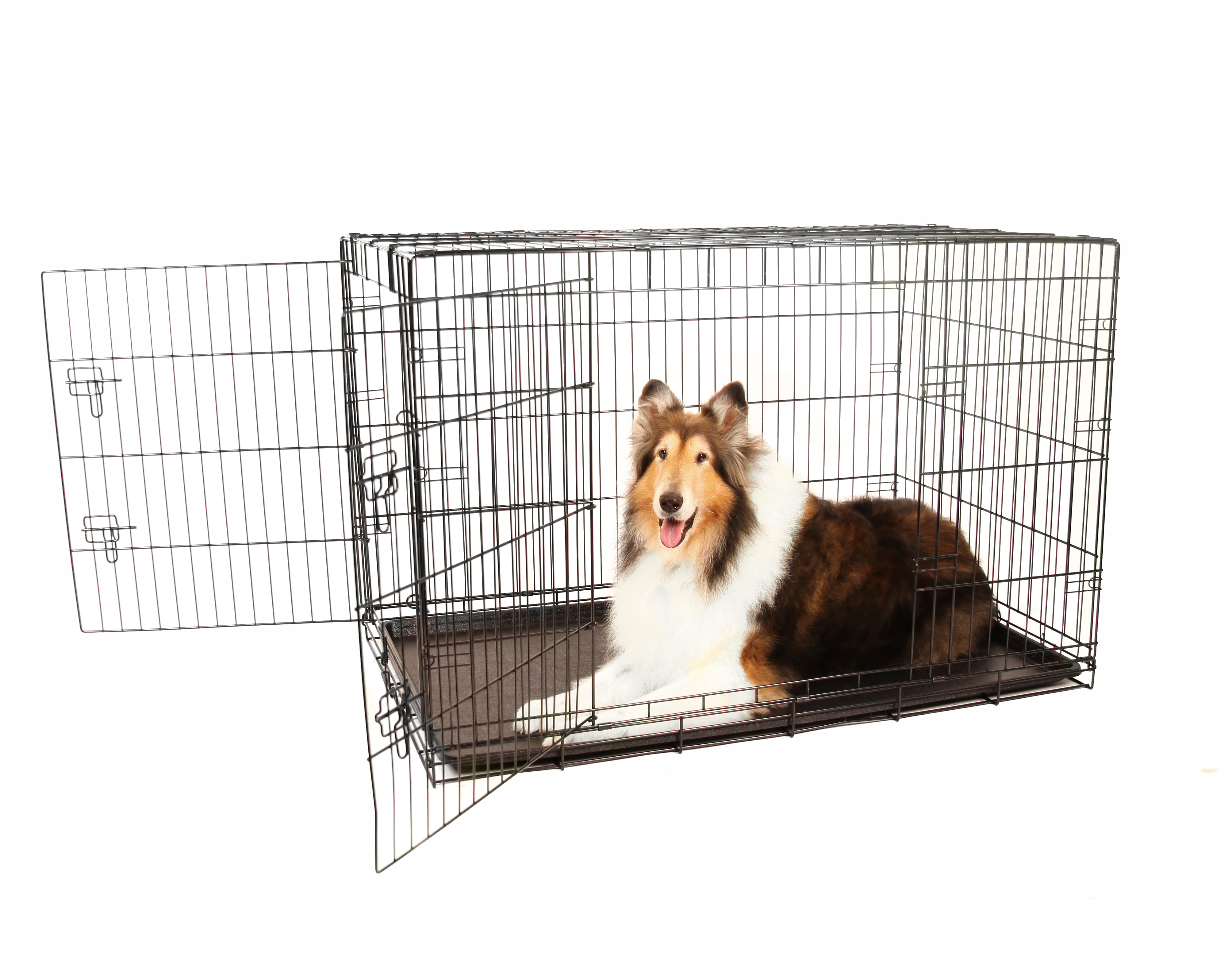 Carlson Compact and Secure Double Door Metal Dog Crate by Carlson Pet Products