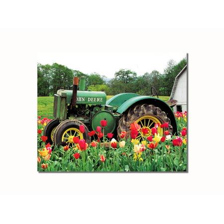 Old John Deere Tractor in Tulips near Barn Wall Picture 8x10 Art Print