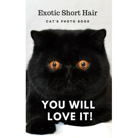 Exotic Short Hair Cat's Photo Book , Photographic with words. - (Words That Start With A Short U)