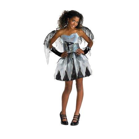 Fairy Costume Teen (Teen Frost Fairy Costume Disguise)