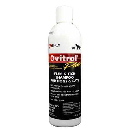 Ovitrol Plus Flea  Tick Shampoo for Dogs  Cats