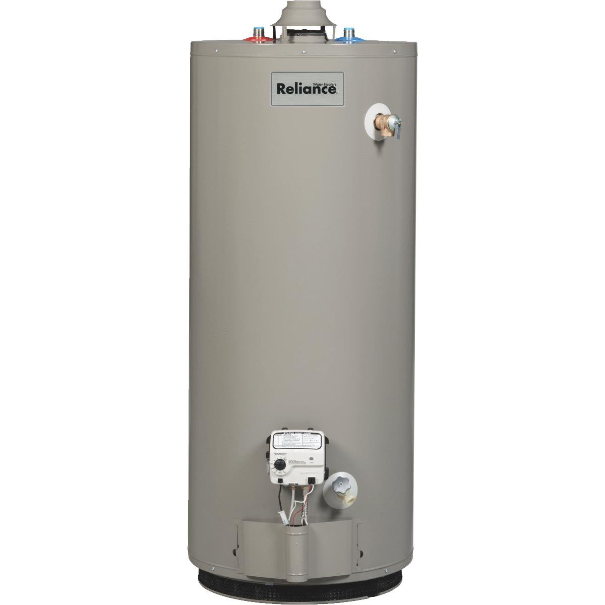 Reliance Liquid Propane (LP) Gas Water Heater With 2 In. ...