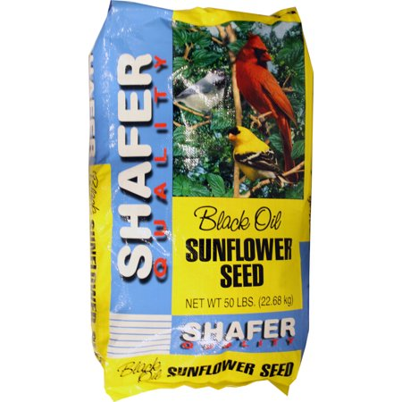 SUNFLOWER SEED 100% OIL BCI GEN 50LB