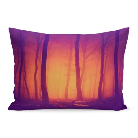ECCOT Pink Halloween Spooky Purple Red Vintage Color Forest Scene Pillowcase Pillow Cover Cushion Case 20x30 - Halloween Forest Scene