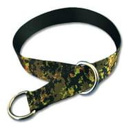 Strapworks SC-PL1-S 1 W inch Premier Line Slip & Show Dog Collars - Small