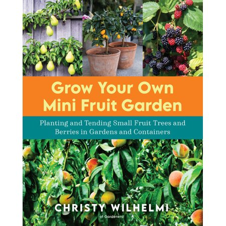 Grow Your Own Mini Fruit Garden: Planting and Tending Small Fruit Trees and Berries in Gardens and Containers (Paperback)
