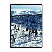 CADecor Real Penguins Snow Blue Sea Fleece Throw Blanket 58x80 inches