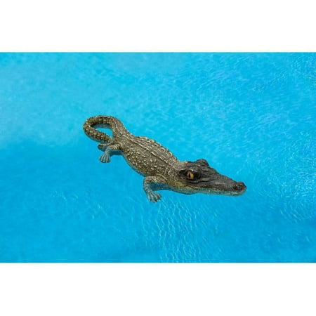Floating Gator (Poolmaster Small Floating Alligator, 18
