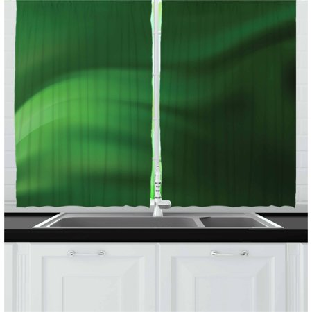 Forest Green Curtains 2 Panels Set, Abstract Pattern with Color Wave in Green Shades and Ombre Effect, Window Drapes for Living Room Bedroom, 55W X 39L Inches, Forest Green Pale Green, by Ambesonne