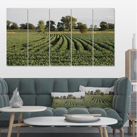 Wisconsin Soybean Field Rows - Landscape Canvas Art Print - image 3 de 3