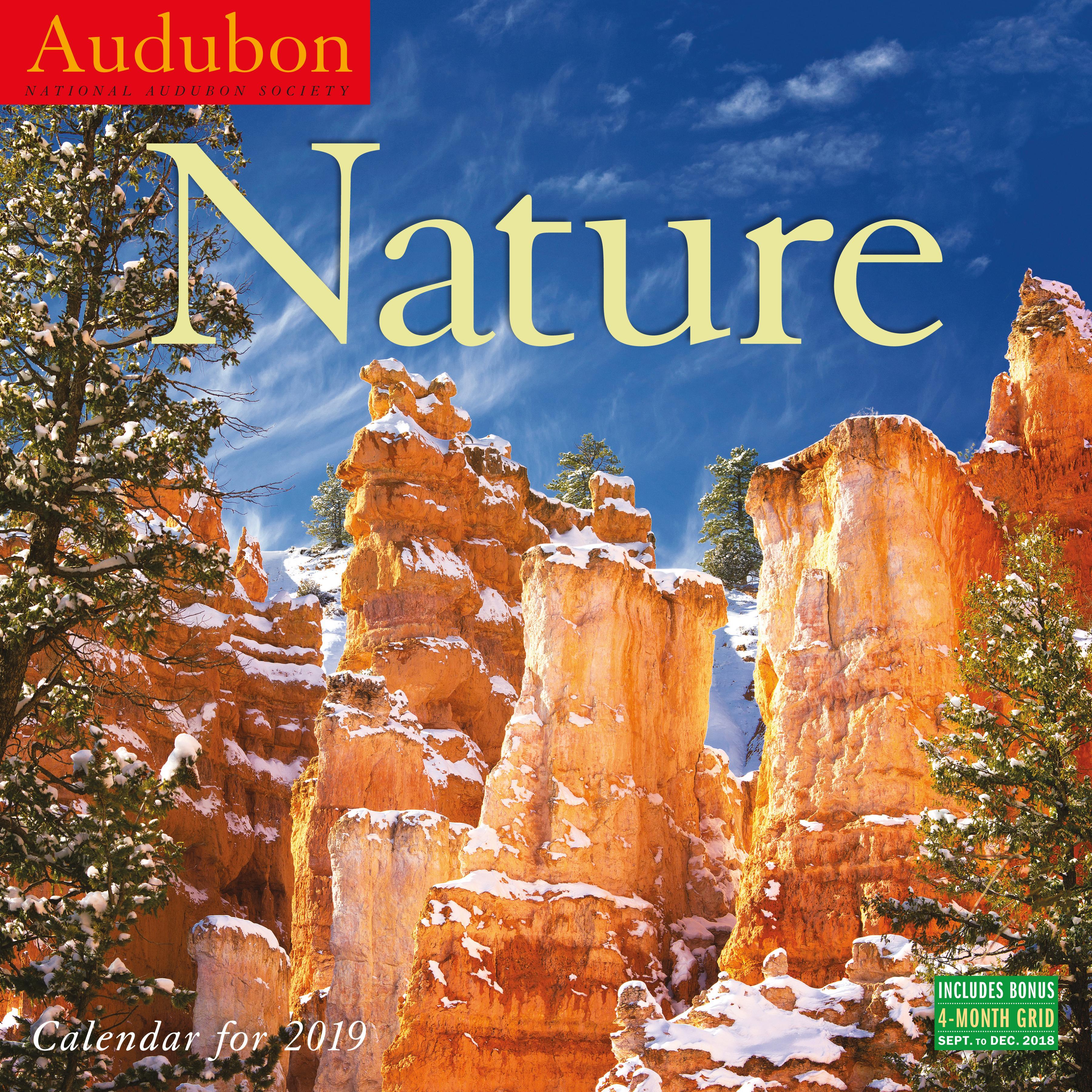 Audubon Nature Wall Calendar 2019 (Other)