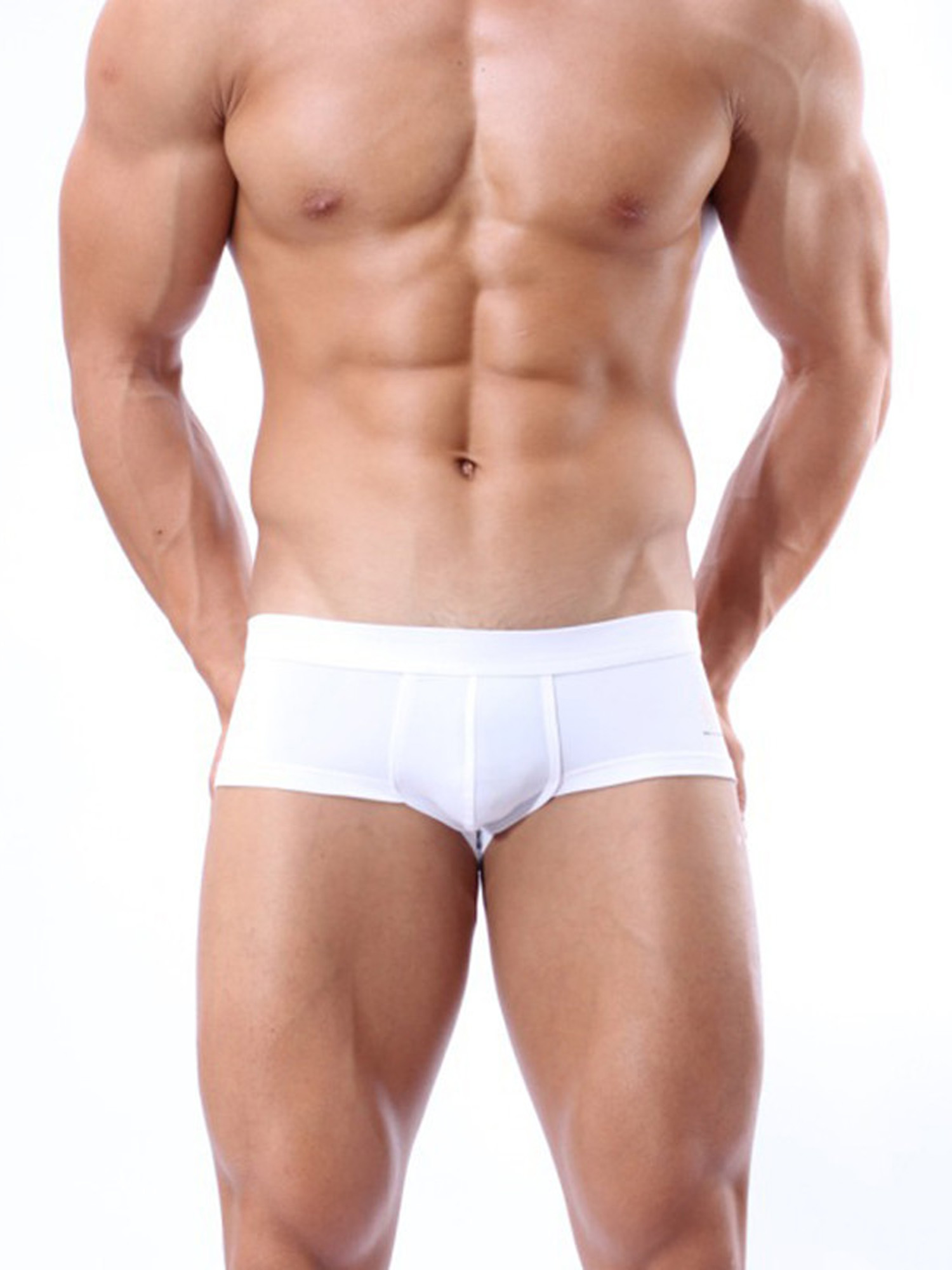 Mens Swimwear Low Rise Boxer Briefs Swimming Trunks  Shorts Bikini Underwear