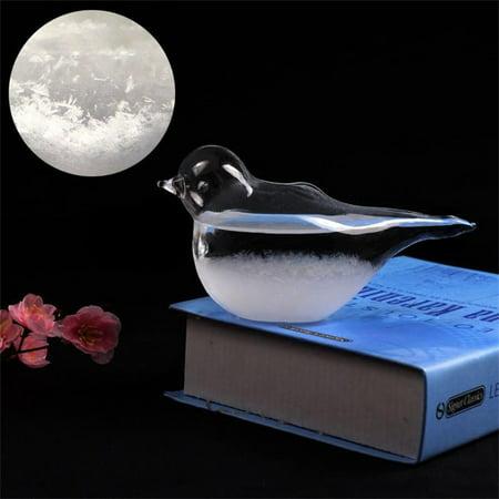 Weather Forecast Barometer Bird Shape Storm Glass Home Office Decoration Birthday Valentine's Gift](Valentine Home Decorations)