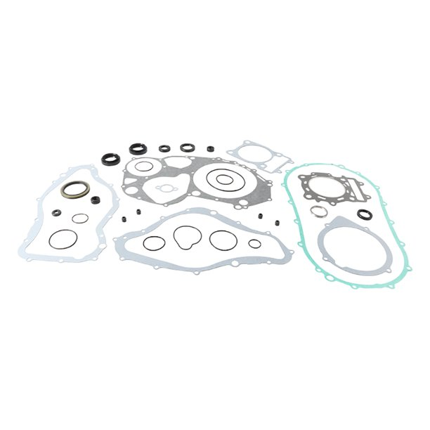 New Vertex Gasket Set with Oil Seals (811839) for Arctic