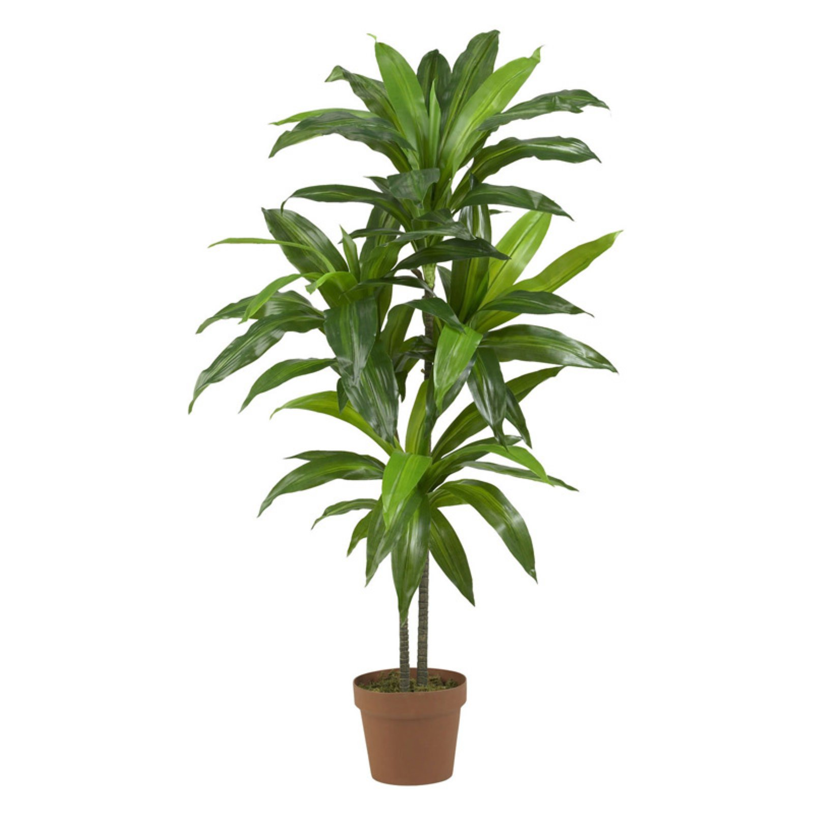 Nearly Natural 43-in. H Artificial Dracaena Plant