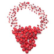 Aeravida Handmade Floral Sweetheart Synthetic Coral Statement Necklace