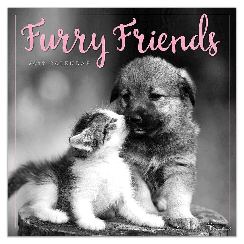 "2019 Furry Friends 12"" x 12"" January 2019-December 2019 Wall Calendar by TF Publishing"