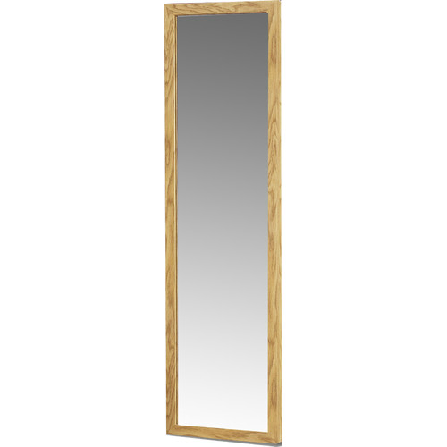 August Grove Gerke Over The Door Full Length Mirror