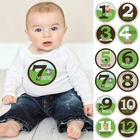 Woodland Creatures - Baby Boy Monthly Sticker Set - Baby Shower Gift Ideas - 12 Piece for $<!---->