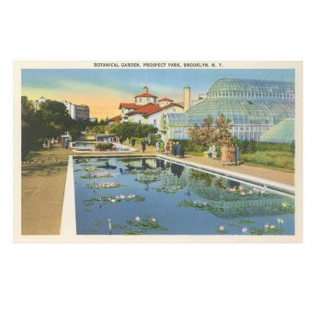 Botanical Garden, Prospect Park, Brooklyn, New York Print Wall (New York Botanical Garden Best Time To Visit)