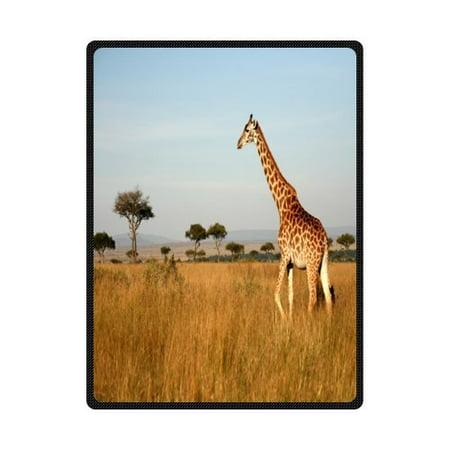 CADecor Giraffe In Grassland Fleece Blanket Throw Blanket 58x80 inches](Giraffe Blanket)