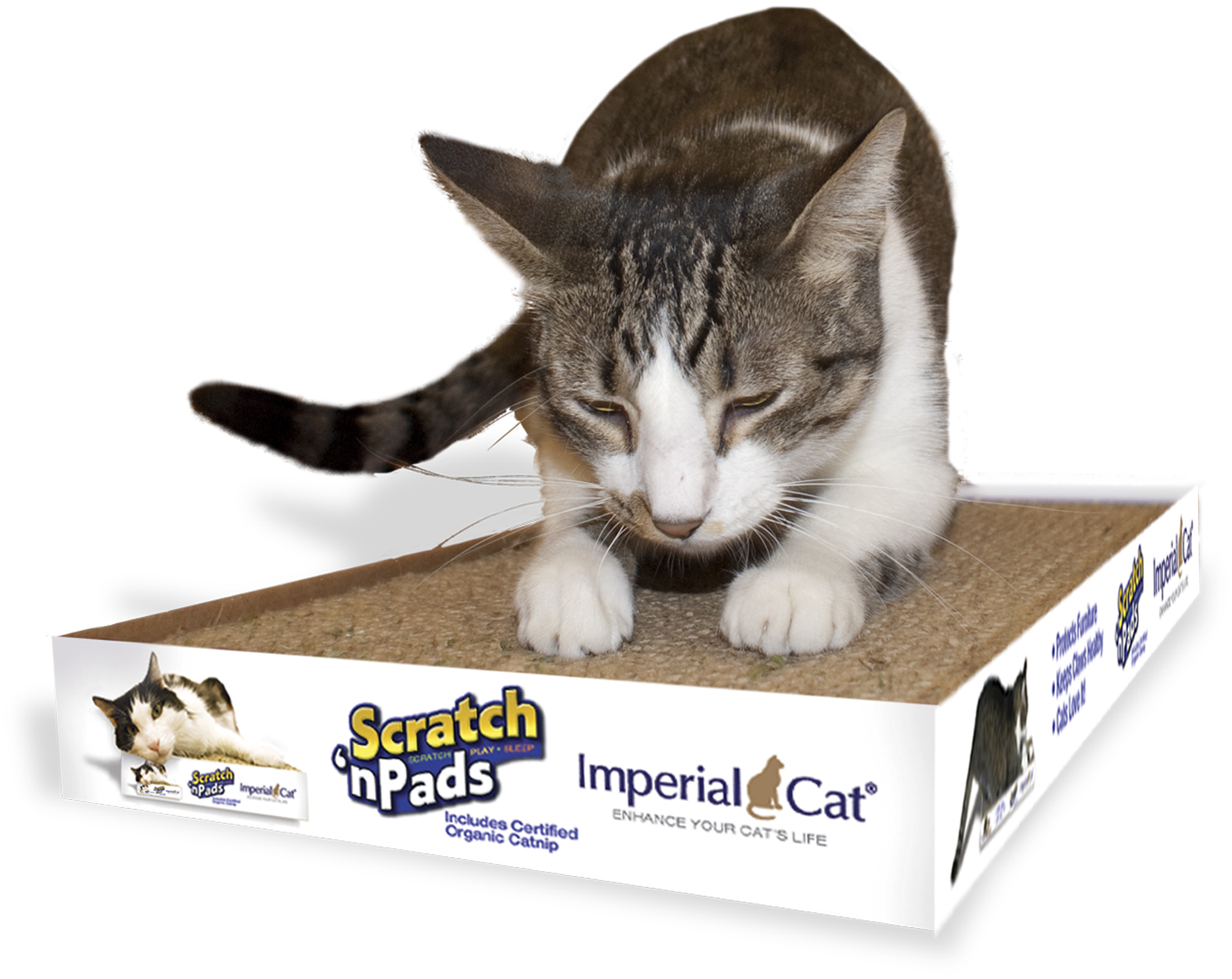 cat scratching pads