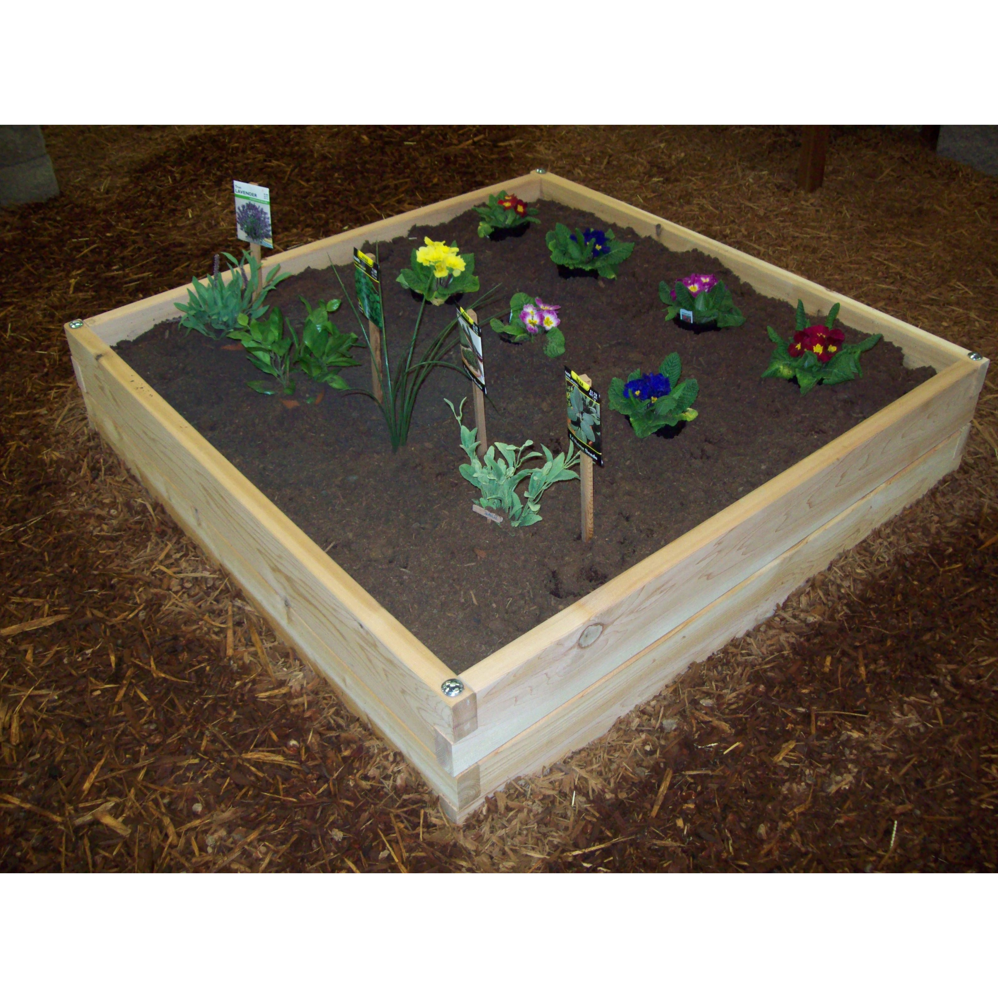 garden raised design white cedar kit ana boards bed beds diy x size for projects