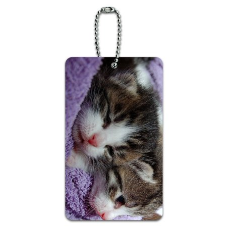 Graphics and More Kittens - Kitty Cats ID Card Luggage Tag