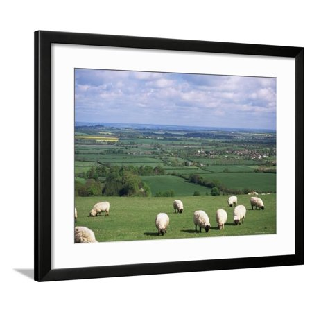 Uffington and the Vale of the White Horse, South Oxfordshire, England, United Kingdom Framed Print Wall Art By Rob Cousins