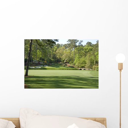 - 12th Hole Augusta National Wall Mural by Wallmonkeys Peel and Stick Graphic (18 in W x 12 in H) WM51693