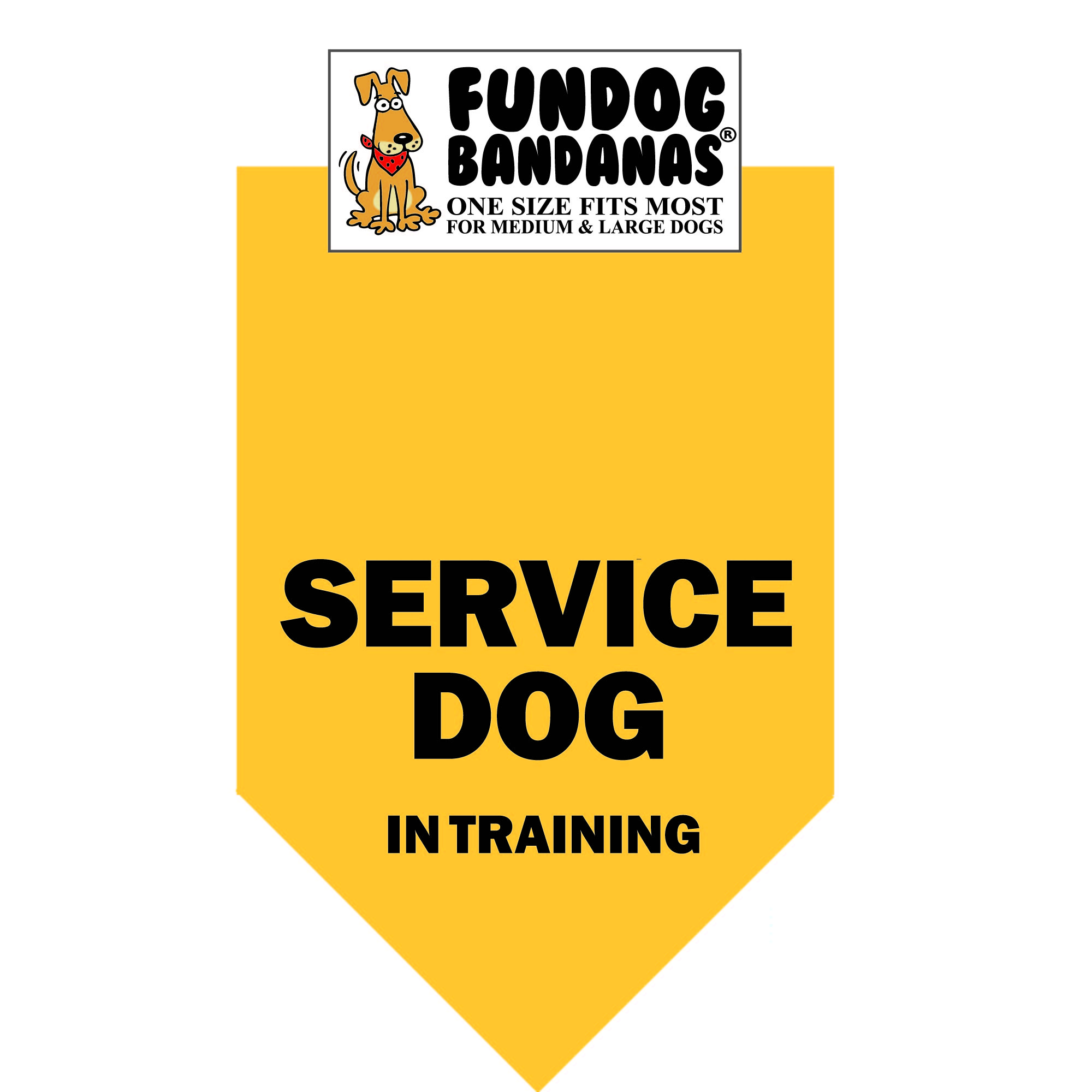 Fun Dog Bandana - Service Dog in Training - One Size Fits Most for Med to Lg Dogs, gold pet scarf