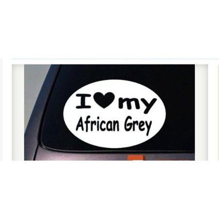 i love my AFRICAN GREY parrot STICKER bird macaw WINDOW STICKER DECAL Cage Wing 6