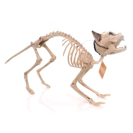 Halloween SKELETON CAT Plastic Animated Sound Flashing Eyes - No Eyes Halloween