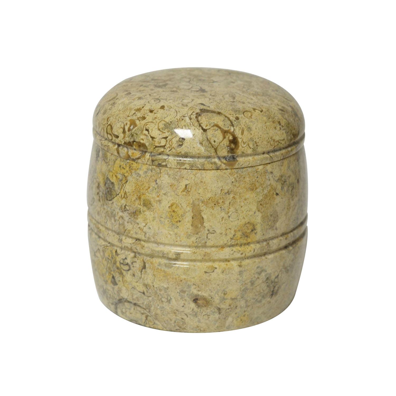 Rembrandt Home Fossil Jar