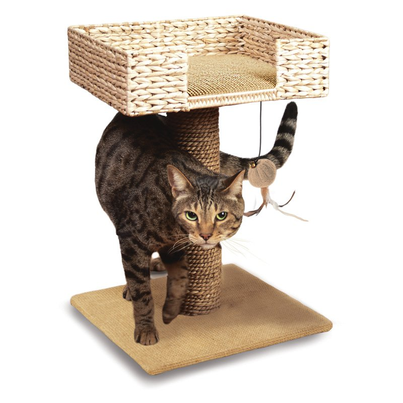 Ware Hyancinth & Jute Cat Perch and Play