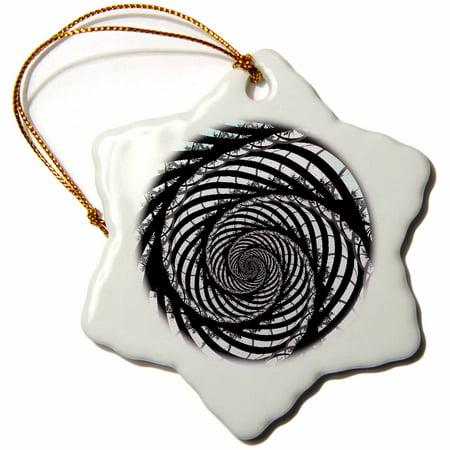 3dRose Fractal Zebra With Aqua - Snowflake Ornament, - Fractal Snowflake