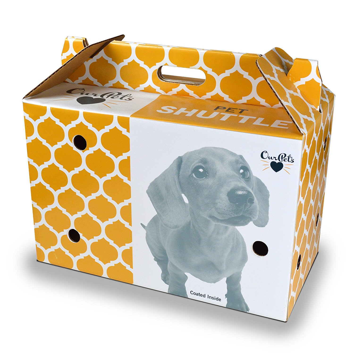 Ourpets Cardboard carrier