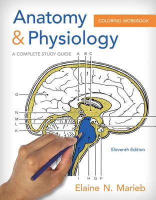- Anatomy & Physiology Coloring Workbook : A Complete Study Guide -  Walmart.com - Walmart.com