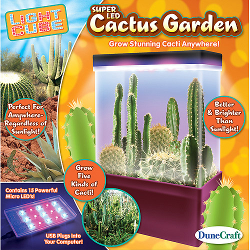 LED Light Cube Mini Cactus Garden - Grow 5 Kinds of Cacti