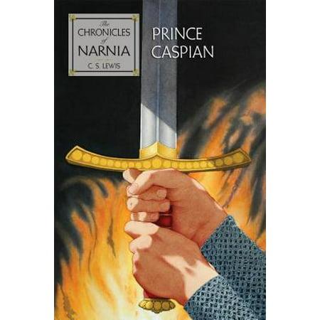 Prince Caspian : The Return to Narnia the Return to Narnia](Narnia Dresses)