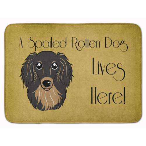 Latitude Run Cobby Long Hair Dachshund Spoiled Dog Memory...