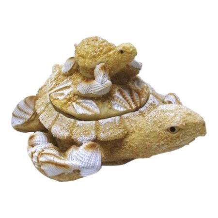 Nautical Coastal Sea Turtle with Baby Sand Seashell Lift Off Lid Trinket Box